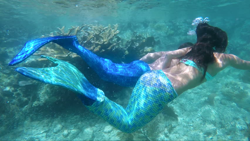 Meet Syrena, Singapores First Mermaid! | Cosplay News Network