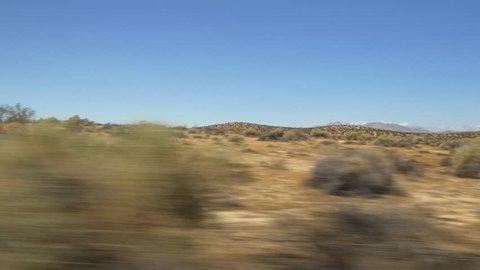 summer day california desert nature plant wind 4k usa