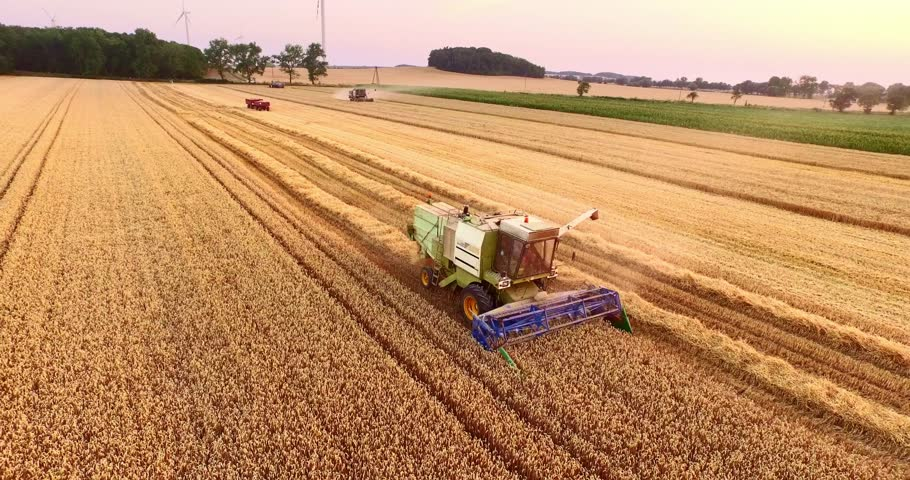 Aerial view Combine Harvester gathers the wheat at sunset. Harvesting grain field, crop season. 4K. Beautiful natural aerial landscape. Food industry concept. | Shutterstock HD Video #18763820