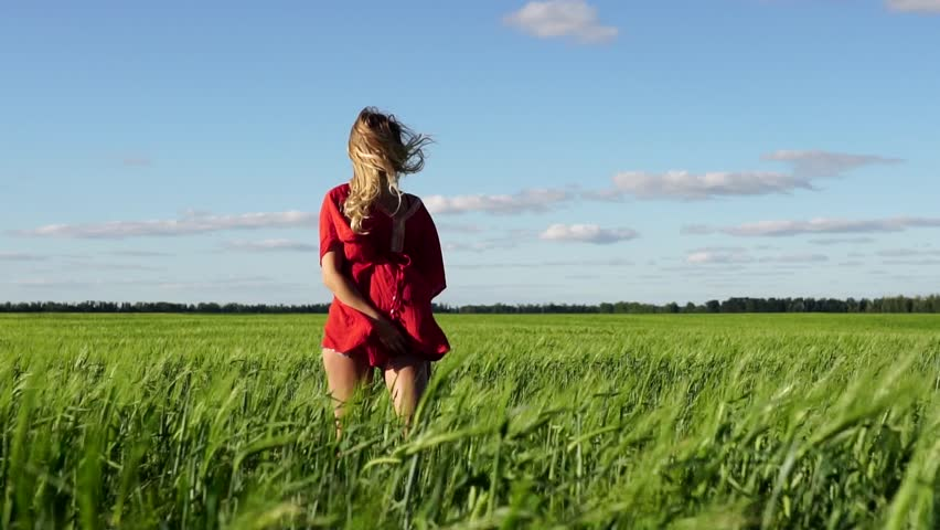 Happy woman enjoying nature beautiful blonde dancing on the field. Freedom concept. | Shutterstock HD Video #18963635