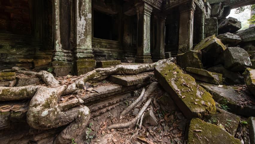 Overgrown Ruins