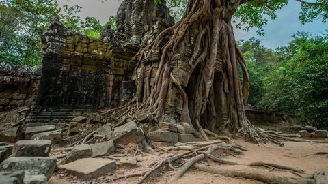 Nature reclaiming the ruins of the Ta Som temple, temple among the Angkor complex of temples, near Siem Reap, Cambodia