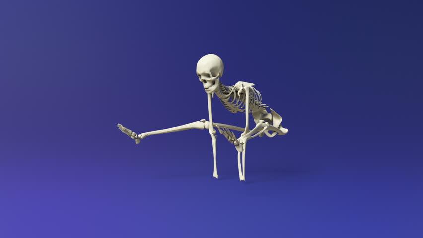 boxing skeleton: animation of a human skeleton boxing. stock, Skeleton