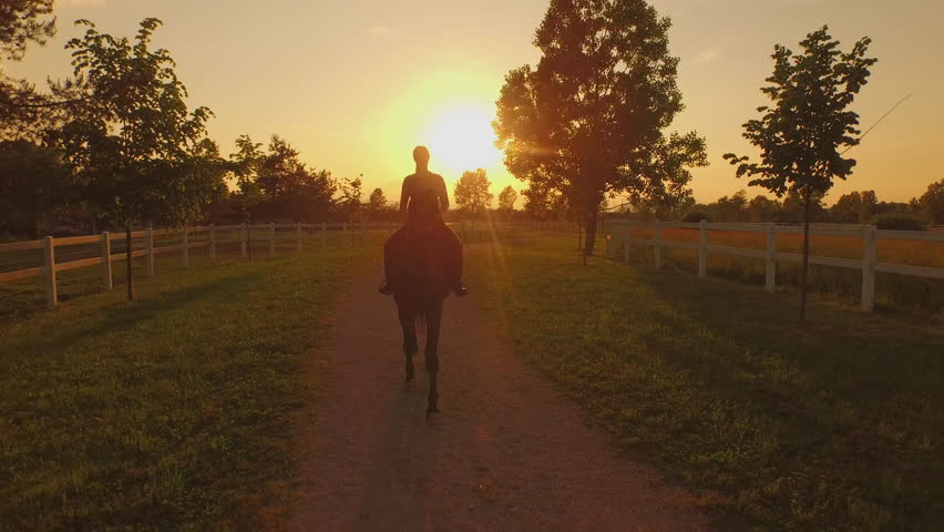 AERIAL: Flying close above young woman rider horseback riding large brown stallion in between corrals. Picturesque view of horse ranch and female riding gelding on dusty footpath at golden sunset