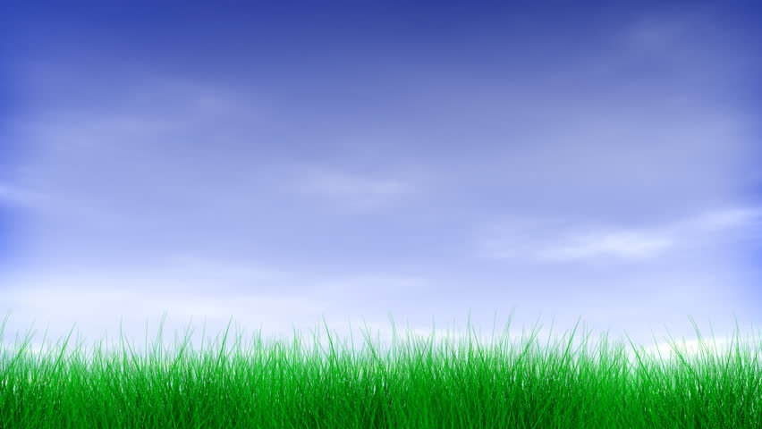 grass background hd green leaf text animates on to form the word green blue sky with clouds and green green grass sky royalty free video