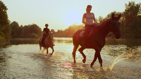 SLOW MOTION CLOSE UP DOF: Two riders riding horses and walking in shallow water at magical golden sunset along overgrown riverbank. Palomino and dark brown horse on ride in river at beautiful sunrise