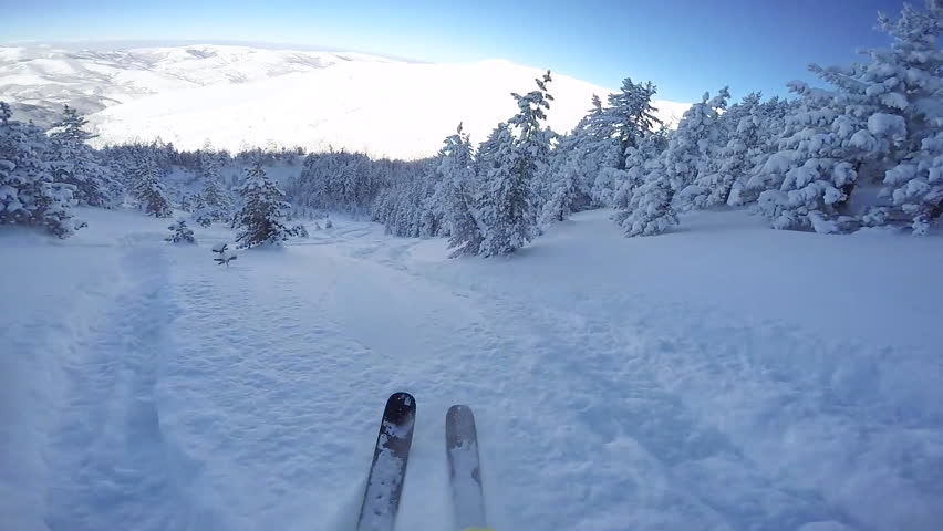 FIRST PERSON VIEW CLOSE UP: Snowboarder riding fresh powder snow in snowy mountain forest. Freeride skier skiing in perfect powder snow off piste in sunny mountain ski resort | Shutterstock HD Video #19548268