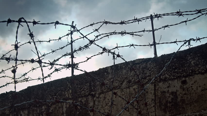 Razor Concertina Wire Obstacle Pictures - WIRE Center •