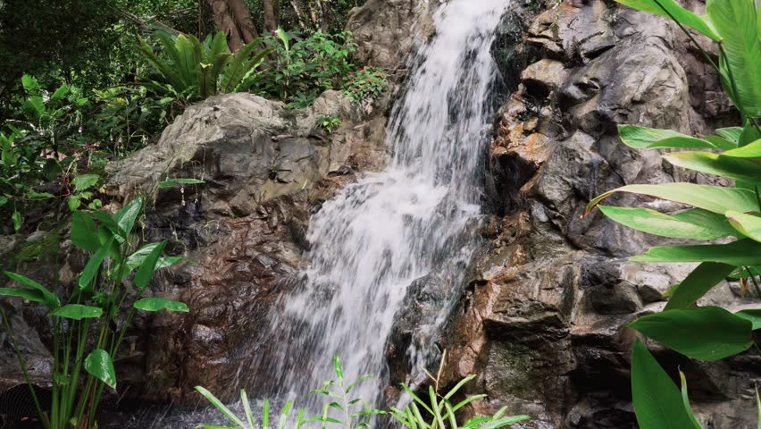 Tropical Jungle Waterfall in Botanic Gardens