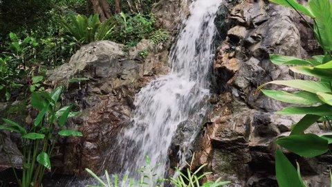 Tropical Jungle Waterfall in Botanic Gardens