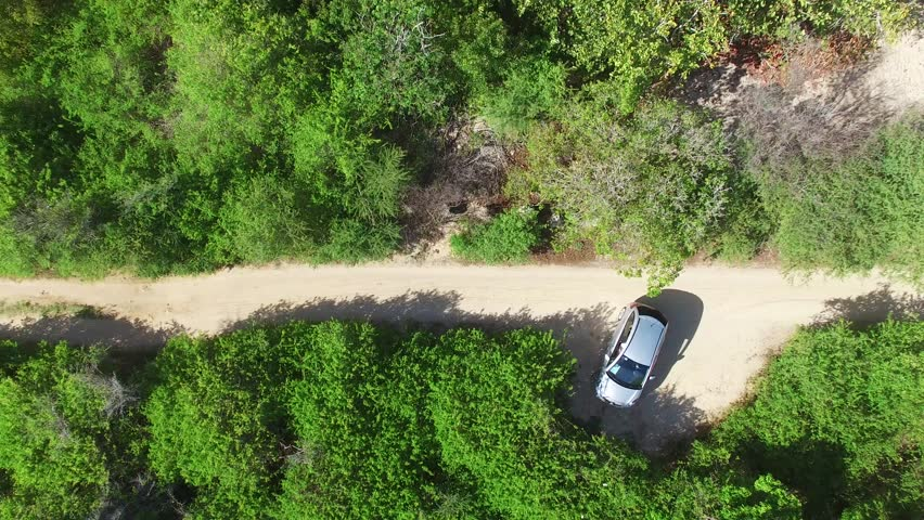 Aerial view of a car passing by the coastline on the Atlantic ocean of the caribbean island, Pointe à la Gourde, Grande Terre, Guadeloupe | Shutterstock HD Video #19950313