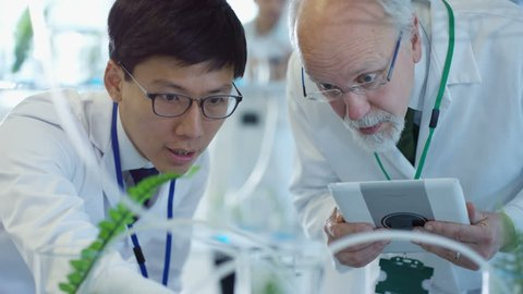4K Experienced male research scientists checking plant samples in laboratory & having discussion. Shot on RED Epic.