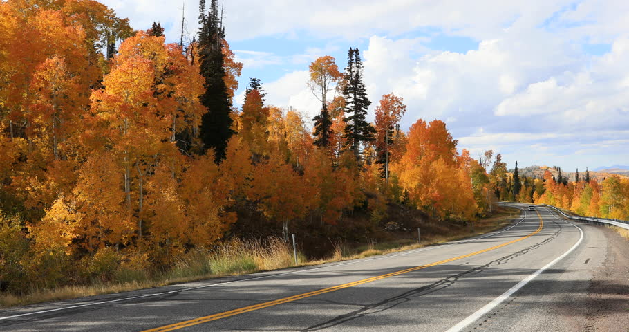 <b>Autumn</b> Landscape <b>Road Beautiful Colored</b> Trees Stock Photo ...