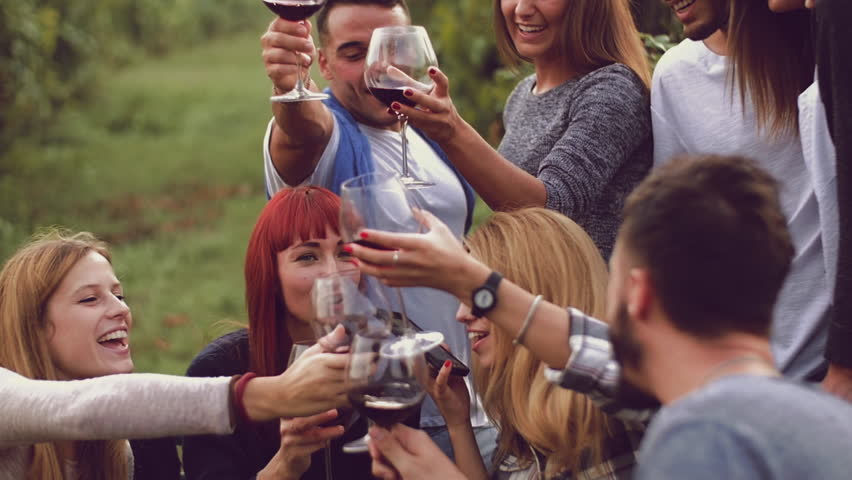 Group of friends toasting with red wine in the vineyard  | Shutterstock HD Video #20268988
