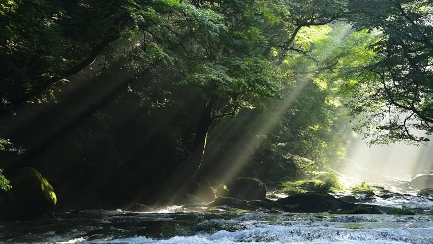 Kikuti ravine a beam of light | Shutterstock HD Video #20437948