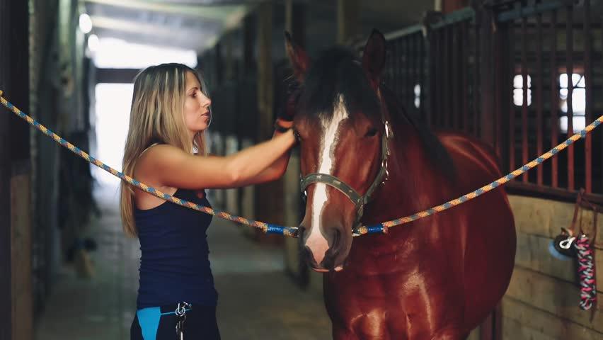 Dani Daniels and ranch hand fucking hard in horse stables № 632675 загрузить