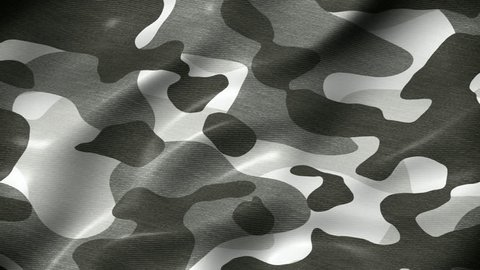 Camouflage pattern military abstract motion background seamless loop