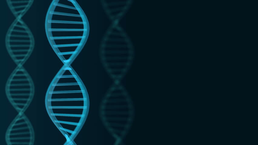 Futuristic rotating  blue DNA strand. Genetic engineering scientific background. Simple loop 3d animation. Template for biochemistry and biology projects.