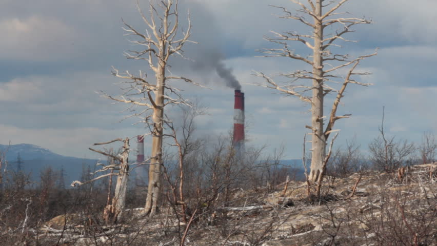 Result of air pollution. Dead forest: withered trees on backdrop of hills and steaming pipes of metallurgical plant, dead naked tree on background of Smoking chimneys. Concept of the dying Earth