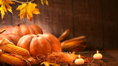 Pumpkin, Squash. Happy Thanksgiving Day wooden Table Background decorated with pumpkins, corn comb, candles and autumn leaves garland. Holiday Autumn festival scene, Fall, Harvest. Full HD 1080p video