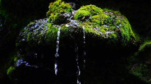 Slow motion close up of waterfall splash, spring water as it falls and dribbles on rocks covered with green moss