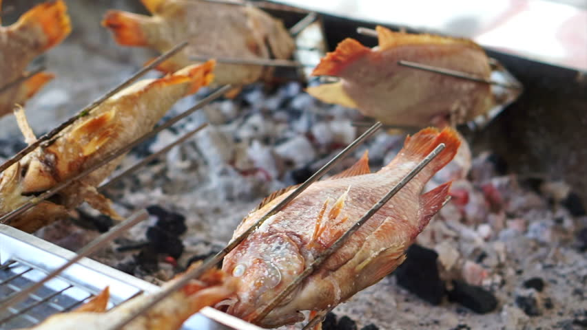 Whole fish roasting machine, red fish grill with charcoal | Shutterstock HD Video #21395098