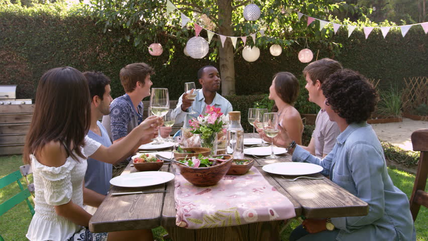 Friends Making A Toast At Outdoor Backyard Party Shot On R3D