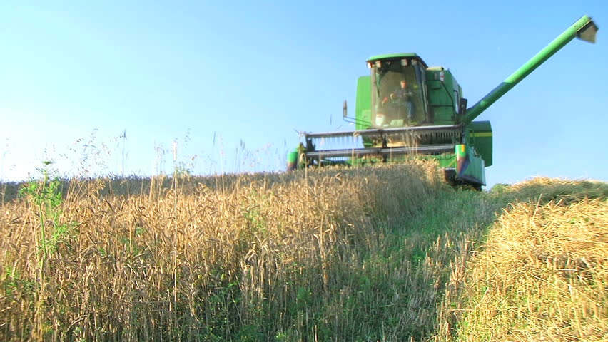 Farmer Combining Wheat