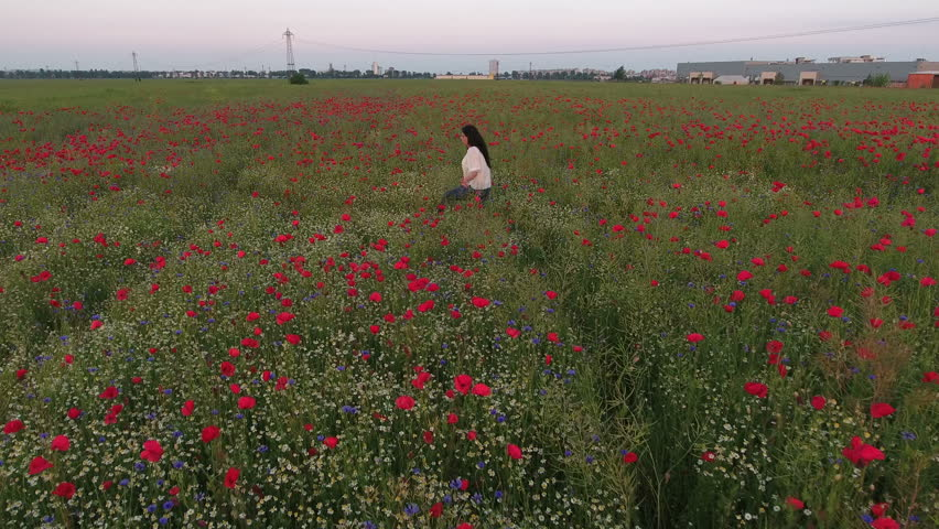 Aerial view of a beautiful woman traditional dressed, with long brunette hair having fun outdoors in the poppies field. Happy smiling young woman enjoying nature.  | Shutterstock HD Video #21754378