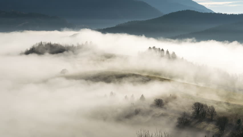 Foggy morning in autumn with sheep emerge from mist time lapse | Shutterstock HD Video #21783598