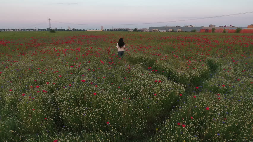 Aerial view of a beautiful woman traditional dressed, with long brunette hair having fun outdoors in the poppies field. Happy smiling young woman enjoying nature | Shutterstock HD Video #22039168