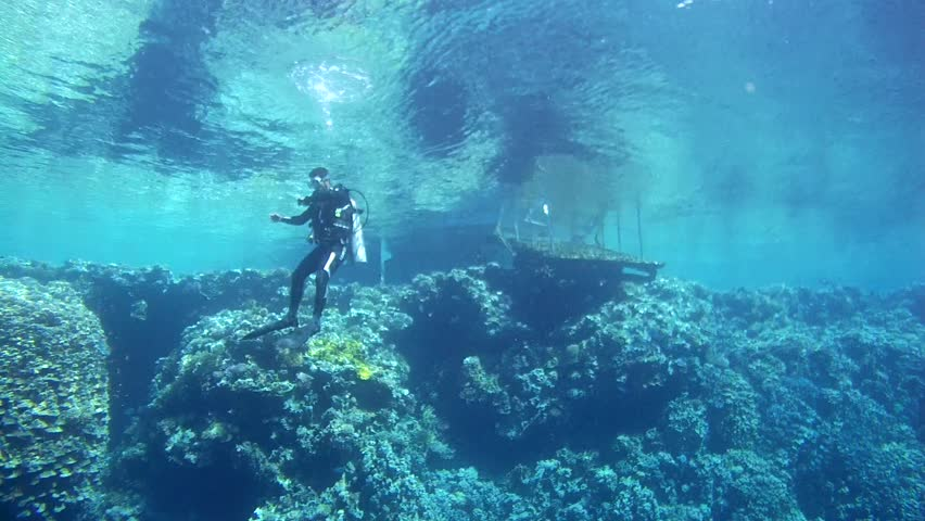 RED SEA,  SHARM EL SHEIKH, EGYPT - OCTOBER 2016: scuba diver hangs next to a coral reef and swim to the pier, Red sea, Sinai Peninsula, Egypt   Shutterstock HD Video #22126432