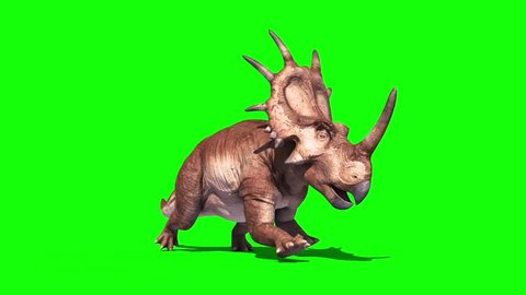 Styracosaurus Triceratops Run Perspective Static Loop Dinosaurs Jurassic Green Screen