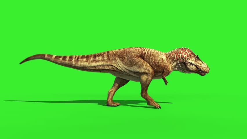 T Rex Tyrannosaur Feathered Run Side Loop Jurassic World Dinosaurs Green Screen