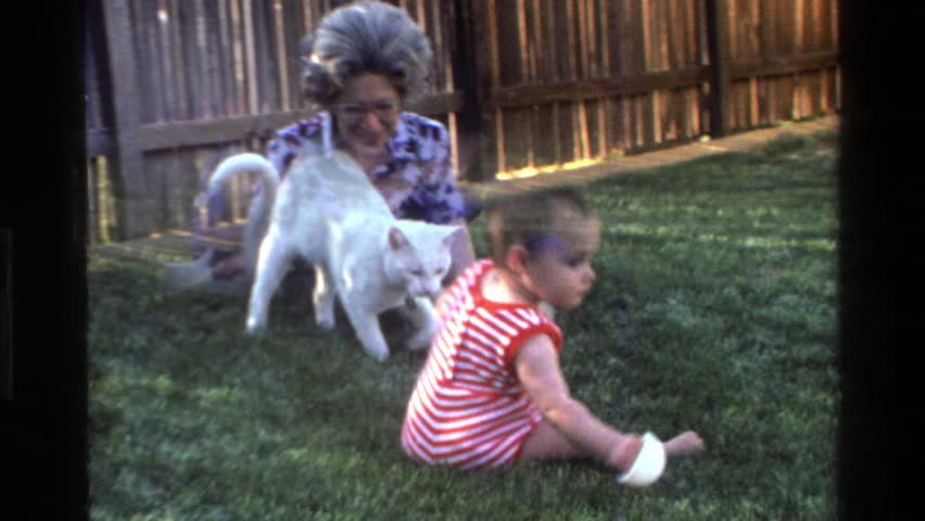 CALIFORNIA 1977: a cat and a baby crawling outside in the grass