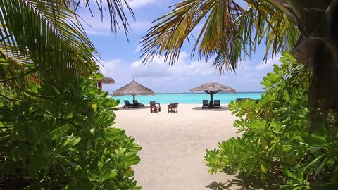 Sandy beach in the Maldives with loungers, deck chairs, umbrellas and palm trees. Green vegetation and white sand beach.