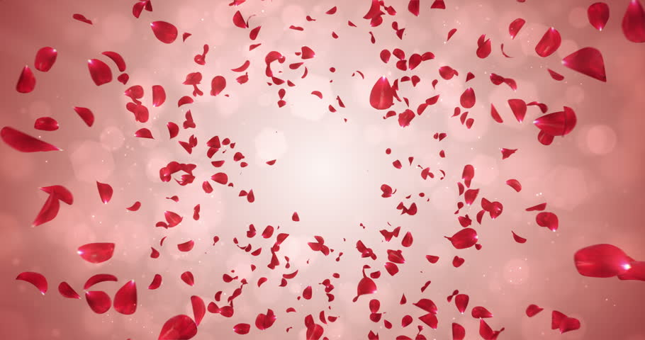 Animation of romantic flying red rose flower petals backdrop. Ideal for St. Valentine's Day, Mother's Day, wedding anniversary greeting cards, wedding invitation or birthday e-card. Seamless loop 4k
