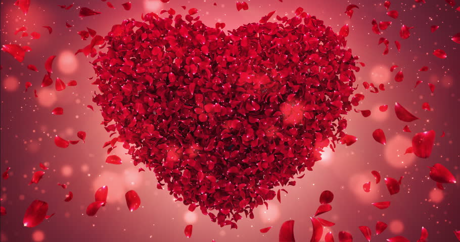 Romantic Flying Red Rose Flower Stock Footage Video 100 Royalty
