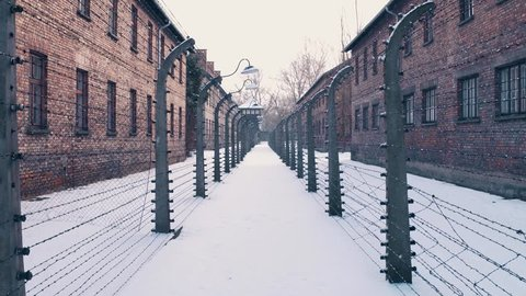 Steadicam walk between barbed wire fences. Auschwitz Birkenau, German Nazi concentration and extermination camp. Barracks in falling snow. 4K video