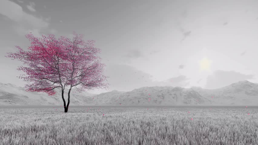 Monochrome Fantasy Spring Landscape With Stock Footage