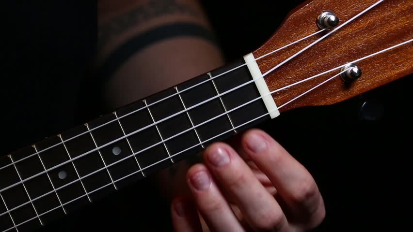 Header of ukulele