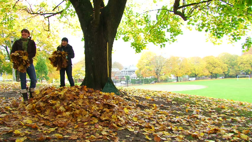 Friends enjoy a fall day by playing in leaf pile as man flips into pile and girls shower him with leaves.