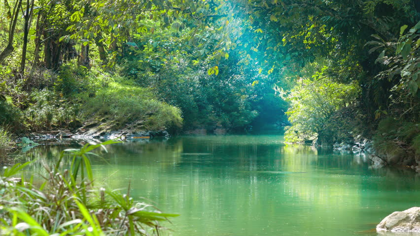 River and jungle forest in Philippines, Nergros Island