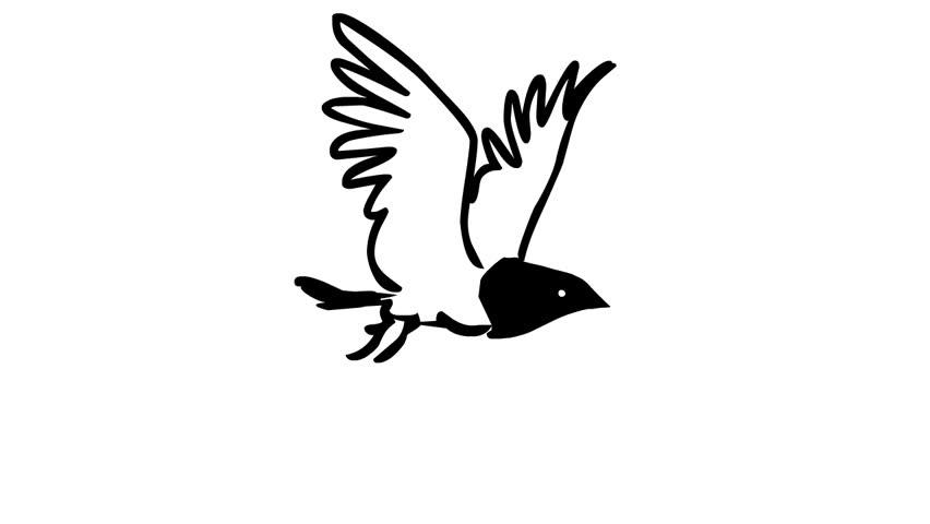 Flying bird (loop animation)