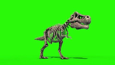 TRex Skeleton Attack Front Jurassic World 3D Rendering green Screen