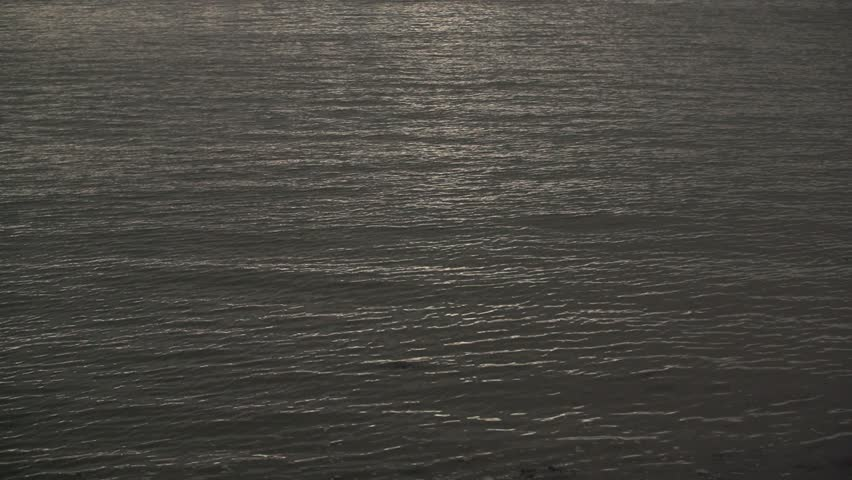 Slow Motion Lake Water Surface fills entire frame.  | Shutterstock HD Video #23990128