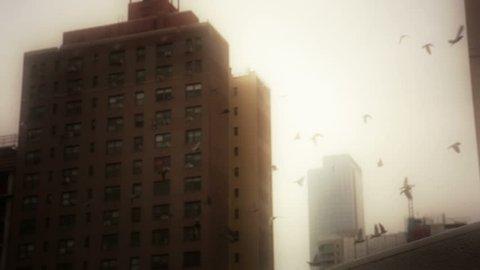 New York City 70s nostalgia pidgeon flock flying overhead brownstone apartment buildings