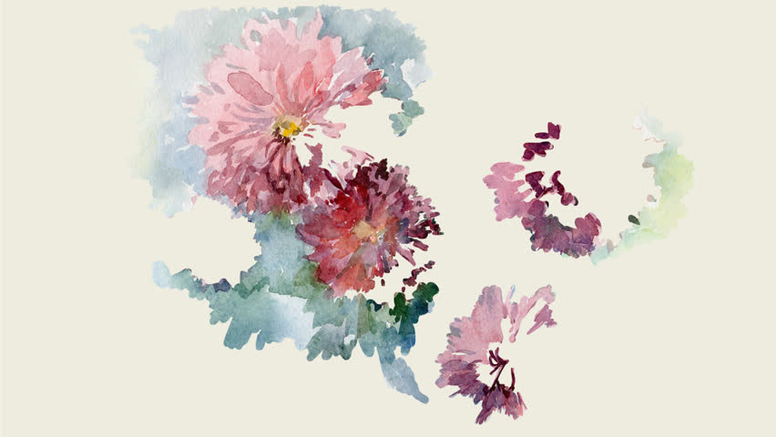 Chrysanthemums flowers water colour. Background of Sketched Flowers spring holidays.