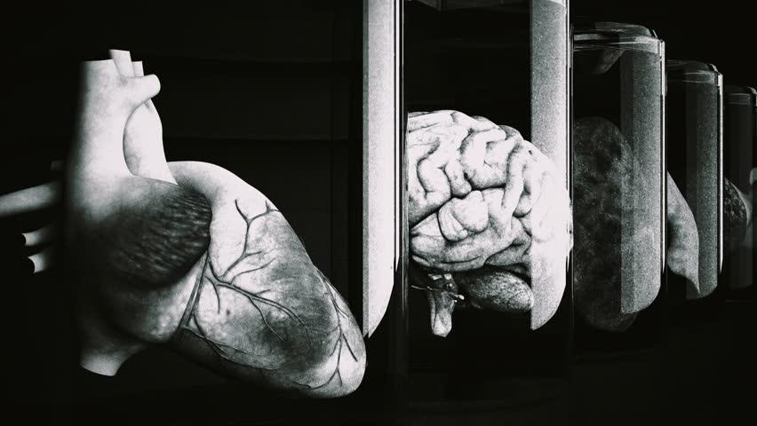 4K Human Organs in Science Laboratory Glasses Cinematic 3D Animation 6 vintage design