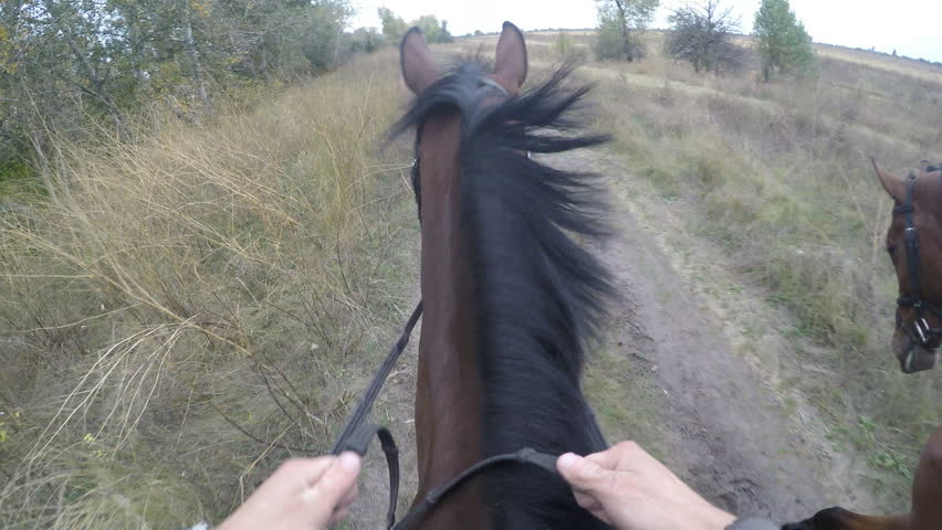 First person view of riding a horse. Point of view of rider walking at stallion at nature. Pov motion. Close up | Shutterstock HD Video #24678674